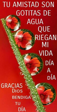 Good Morning In Spanish, Good Morning Good Night, Good Morning Quotes, Morning Gif, Friendship Love, Friend Friendship, Friendship Quotes, Morning Greetings Quotes, Morning Messages