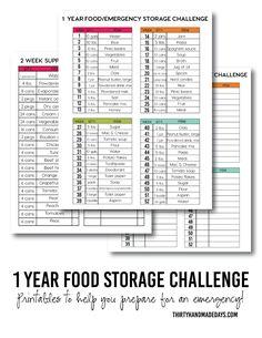 1 Year Food Storage Challenge with printables from www.thirtyhandmadedays.com