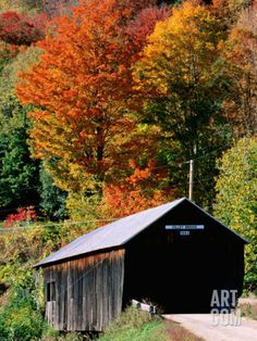 Autumn Leaves Surrounding Cilley Covered Bridge, Vermont Photographic Print by John Elk III at Art.com