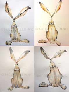 Hares and Herdwicks