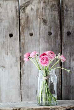 Pink flowers / Roze bloemen