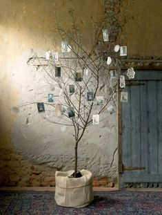 """Nice idea for a wedding.maybe a bit more """"polished"""". Arbre photos great idea for a special birthday party to show off old pics Australian Christmas, Modern Christmas, White Christmas, Christmas Time, Family Tree With Pictures, Old Pictures, African Christmas, Family Tree Chart, Diy Y Manualidades"""