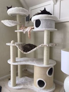 an ultra modern cat tree with several platforms and beds, with scratcher posts and some hammocks Animal Room, Cat Tree House, Cat House Diy, Diy Cat Tree, Cat Towers, Cat Playground, Cat Enclosure, Cat Condo, Cat Tree Condo