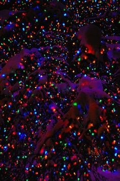 Have a Holly Jolly Christmas : Colored Lights Christmas Lights Wallpaper, Christmas Phone Wallpaper, Xmas Wallpaper, Wallpaper Natal, Look Wallpaper, Plain Wallpaper, Christmas Pictures With Lights, Trippy Iphone Wallpaper, Wallpaper Desktop