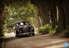 Weddings - Paul Andrews Photography Paul Andrew, Chevron, Photographers, Weddings, Studio, Mariage, Wedding, Studios