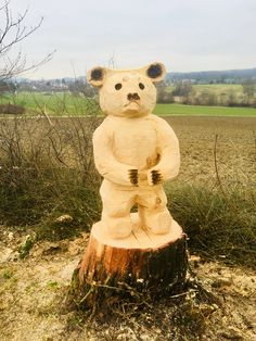 Simple Wood Carving, Chainsaw Carvings, Teddy Bear, Cars, Fitness, Animals, Glee, Luxury, Figurine