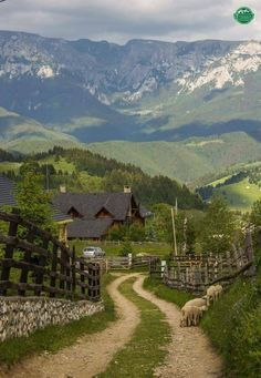 "angel-kiyoss: "" Fundatica, Brasov County """