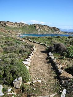 Paros Park path! Amazing place! #Paros, #Greece, #Nature