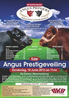 SA Angus   Sales, Events & Results - 2015