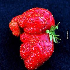 This strawberry looks like a baby elephant.