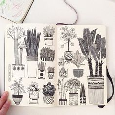 these are so pretty! would love to have potted plants like these in reality...