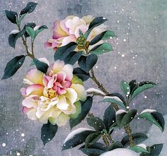 Urgently to improve the mood of the snow-covered flower Yao Xuan Yun Japanese Painting, Chinese Painting, Japanese Art, Decoupage, Art Floral, Watercolor Flowers, Watercolor Paintings, Chinese Flowers, Illustration Art