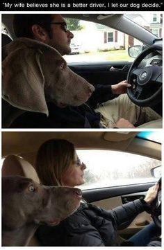 Man's best friend. - http://geekstumbles.com/funny/lolsnaps/mans-best-friend-2/