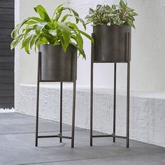 Dundee Bronze Floor Planters - Floor Plants - Ideas of Floor Plants - Shop Dundee Floor Planters. Handcrafted iron planters with warm antiqued bronze finish are framed inside an architectural stand with slender legs and tripod crossbar supports. Large Indoor Planters, Outdoor Planters, Diy Planters, Tall Plant Stands, Diy Plant Stand, Patio Plans, Floor Plants, Patio Accessories, Dundee