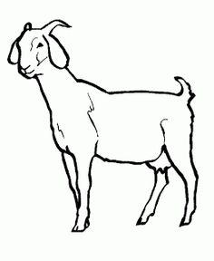 plansa de colorat capra cu ied - Google Search