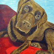 Sandro La Gaccia –  – Fine Art Galerie – Acryl-, Öl- und Temperabilder Tempera, Sandro, Pitbulls, Fine Art, Dogs, Animals, Pictures, Animales, Pit Bulls