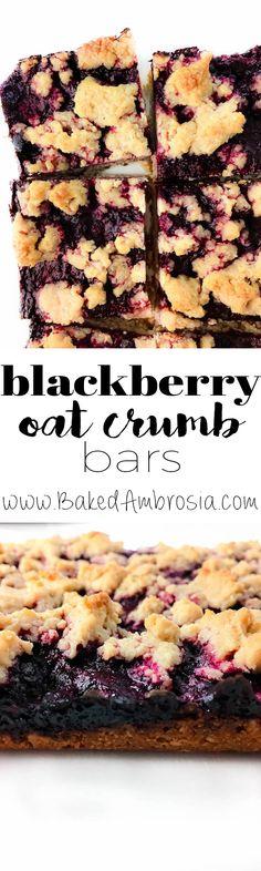 Blackberry Oat Crumb Bars (Gluten Free,  Vegan)