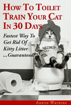 How To Toilet Train Your Cat In 30 Days: Fastest Way To Get Rid Of Kitty Litter…Guaranteed! (This is one of the funniest pics I have ever seen! Look at the feet. Cat Care Tips, Pet Care, Pet Tips, Cat Toilet Training, Cat Garden, Cat Behavior, Pretty Cats, Beautiful Cats, Training Tips