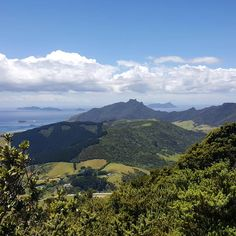 "56 Likes, 1 Comments - Erica Blake (@eskuta12) on Instagram: ""NZ looking as beautiful as ever #purenewzealand#wanderlust #nzmustdo #ig_newzealand…"""