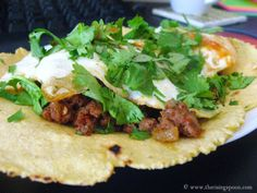 How to Make Homemade Corn Tortillas via The Rising Spoon   mexican food   mexican   tortillas   corn   homemade   recipes   masa   masa harina   delish