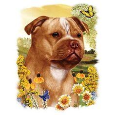 Staffordshire Bull Terrier Dog HEAT PRESS TRANSFER for T Shirt Sweatshirt  #912 #AB