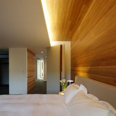 The Park House, by Shaun Lockyer Architects