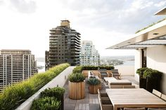 A DESOLATE rooftop is reimagined as a comfortable eyrie with a birds-eye view of the city. Landscape designer William Dangar reveals how to create a spacious but under-utilised rooftop terrace. Outdoor Spaces, Outdoor Decor, Balcony Design, Garden Seating, Building A Deck, Backyard Landscaping, Landscaping Ideas, Outdoor Gardens, Rooftop Gardens