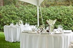 ©Ashley Daniell Photography Design by Shannon Reeves Events; Flowers by Missy Gunnels Flowers