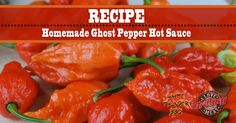 This ghost pepper hot sauce is insane - a challenge even for those of us who love our hot sauces. Are you ready to kick it up a notch?