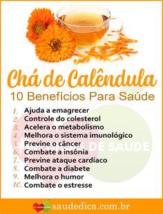 Os 20 Benefícios do Chá de Calêndula Para Saúde  #dicasdesaude #saudedica #ChádeCalêndula #BenefíciosChádeCalêndula #BenefícioChádeCalêndula #ReceitaChádeCalêndula #PrepararChádeCalêndula #ComoUsarChádeCalêndula #ChádeCalêndulacomousar #ChádeCalêndulabeneficios #ChádeCalêndulareceitas #ChádeCalêndulaemagrece #dicasdesaude #saudedica #beleza #mulher #natural #caseiro #receita #receitasfit #receitacaseira #receitafácil #natural #naturaleza Ketosis Diet For Beginners, Diets For Beginners, Diet And Nutrition, Fruit Benefits, Medicinal Herbs, Natural Medicine, Natural Health, Health And Beauty, Natural Remedies
