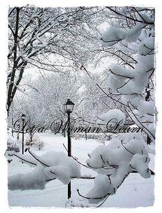 Winter-Snow Art & Music With Vivaldi
