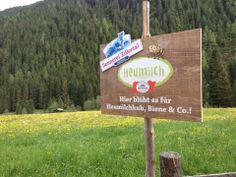 100% Heumilch im Bergland und das leckere Gras für unsere Heumilch Kühe wächst direkt hinter dem Hotel.