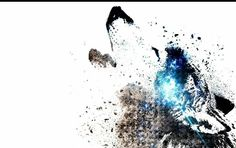 Slash of wolf