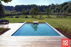 Van raaijen hoveniers almere moderne tuin met zwemvijver purewtr