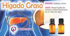 aceites esenciales Hígado graso