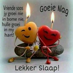 Vriende soos jy groei in my hart Good Night Wishes, Good Night Sweet Dreams, Good Night Quotes, Good Morning Good Night, Afrikaanse Quotes, Goeie Nag, Good Morning Greetings, Special Quotes, Friendship Quotes