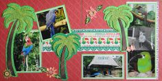 Scrapbook Page - Tropical Birds at the Zoo - 2 page animal layout with a palm tree & a parrot from Everyday Life Album 30