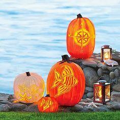 Sally Lee by the Sea Coastal Lifestyle Blog: 10 Favorite Coastal Pumpkins