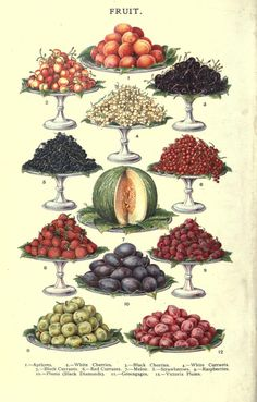 Fruits. Mrs. Beeton's household management : a guide to...