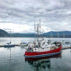 Quiet morning on the water in Cowichan Bay #cowichan #cowichanbay Mountain Photography, Sailing Ships, South America, Asia, Europe, Boat, Country, World, Water