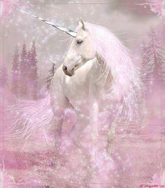2016/01/10 Unicorn