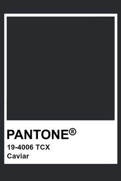 Pantone Caviar