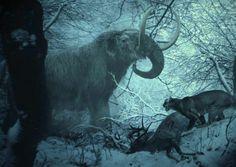 Mastodonte et Puma - Simeonovski