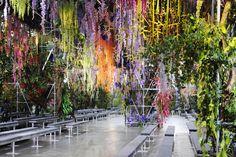 Hanging Gardens Dior