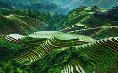 These rice terraces are located in Guangxi, Longsheng, China. Banaue Rice Terraces, Natural Scenery, Cool Backgrounds, Background Pictures, Beautiful Landscapes, Beautiful Scenery, Wonders Of The World, Around The Worlds, China