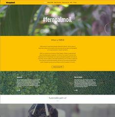 Fernpalmoil website by Upcircle Design Studio Design Studio London, Slow Design, Circular Economy, Design Movements, Graphic Design Studios, Palm Oil, Sustainable Design, Innovation Design, Service Design