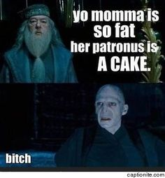 Yo momma harry potter edition meme