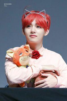 Taehyung is a fox. Jungkook is a bunny. Nick and Judy. Taehyung and Jungkook. Seokjin, Hoseok, Namjoon, Foto Bts, Daegu, Taekook, Bts Bangtan Boy, Jimin, Kpop