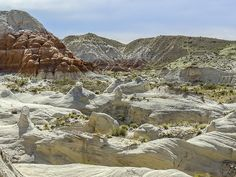 Toadstools Panorama. This photo, of a Panorama of uniquely colored and shaped Enstrada Sandstone rock sculptures, was taken at the Toadstools in Grand Staircase-Escalante National Monument, in southern Utah near the Arizona border. Nature, outdoor, wildlife and landscape scenes photographed by NaturesPix.