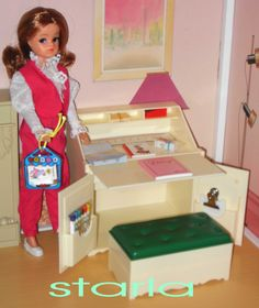 sindy writing bureau